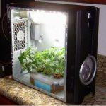Grow Box e Grow Room Artigianali, quali sono i vantaggi?