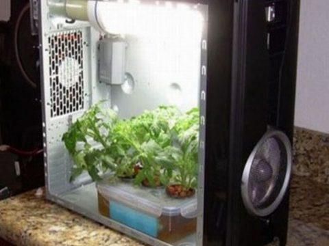 grow-room-artigianali_635x600